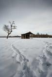 Árvore e barraca inoperantes no campo Foto de Stock