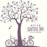 Árvore e bicicletas ilustração do vetor