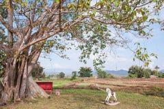 Árvore e cavalo de madeira em Pai imagens de stock