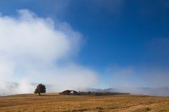 Árvore e exploração agrícola pequena na névoa Foto de Stock