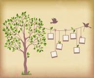 Árvore e fotos ilustração stock