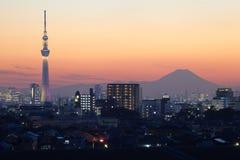 Árvore e Fuji do céu do Tóquio imagem de stock royalty free
