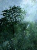 Árvore e luz   ilustração royalty free