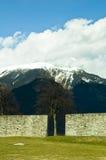 Árvore e montanha Imagens de Stock Royalty Free