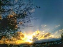 Árvore e nuvens Fotografia de Stock Royalty Free