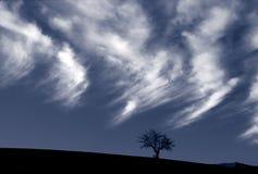 Árvore e nuvens de carvalho Imagens de Stock Royalty Free