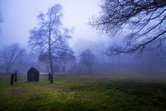 A árvore e o castelo antigo histórico de Roma em Misty Day nevoenta fotografia de stock