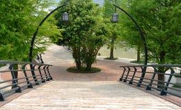 Árvore e ponte Imagens de Stock