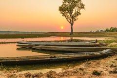 Árvore e rio do barco Imagem de Stock Royalty Free
