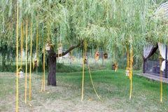 Árvore e velas wedding decoradas fotos de stock