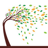 Árvore e vento Foto de Stock Royalty Free