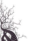 Árvore e videiras Imagem de Stock