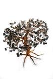 Árvore eletrônica dos bonsais Imagens de Stock