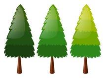 Árvore em três cores Imagem de Stock Royalty Free