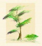 Árvore em um fundo branco ilustração stock
