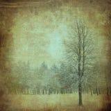 Árvore em um papel do vintage Fotografia de Stock