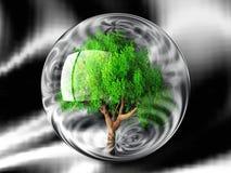 Árvore em uma bolha Imagem de Stock