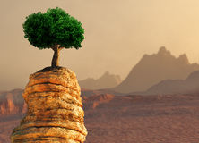 Árvore em uma borda ilustração do vetor