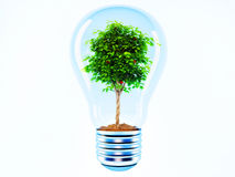 Árvore em uma lâmpada Fotos de Stock Royalty Free