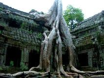 Templo de Ankor Wot fotografia de stock
