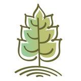 Árvore estilizado do vetor Fotografia de Stock