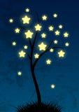 Árvore estrelado feericamente Fotografia de Stock