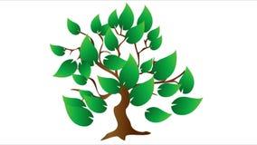 Árvore, folhas, natureza, eco, vídeo ilustração do vetor