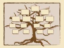 Árvore genealógica Imagens de Stock