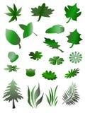 Árvore, grama e folhas do vetor Fotografia de Stock Royalty Free