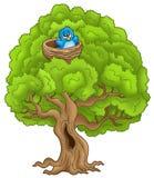 Árvore grande com o pássaro azul no ninho Fotos de Stock