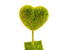 Árvore Heart-Shaped fotos de stock royalty free