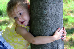 Árvore Hugger Fotografia de Stock