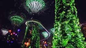 Árvore iluminada do diodo emissor de luz no jardim pela baía Imagem de Stock Royalty Free