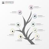 Árvore infographic Molde moderno do projeto do vetor Vetor Foto de Stock