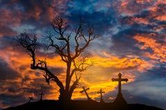 Árvore inoperante da silhueta assustador e cruzes assustadores com conceito do Dia das Bruxas fotos de stock royalty free