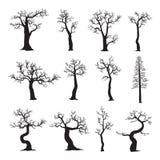 Árvore inoperante sem folhas, coleção de silhuetas das árvores Foto de Stock