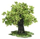 Árvore isolada com trajeto ilustração royalty free