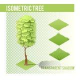 Árvore isométrica 002 Fotografia de Stock Royalty Free