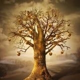 Árvore mágica com maçãs douradas. Imagem de Stock
