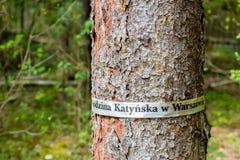 Árvore na floresta de Katyn (região de Rússia, de Smolensk) Imagem de Stock