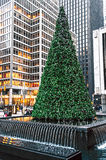 Árvore na fonte Fotografia de Stock Royalty Free