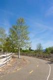 Árvore na fuga de passeio Fotos de Stock