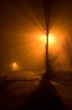 Árvore na névoa Imagens de Stock