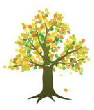 Árvore na queda Foto de Stock Royalty Free