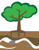 Árvore na terra Imagens de Stock