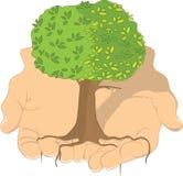 Árvore nas mãos ilustração stock