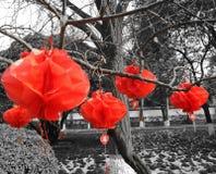 Árvore nevado vermelha chinesa de Lanters Fotografia de Stock Royalty Free