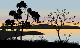 Árvore no cenário do por do sol Imagem de Stock Royalty Free