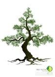 Árvore no fundo branco Imagens de Stock