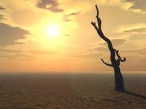 Árvore no horizonte Imagens de Stock Royalty Free